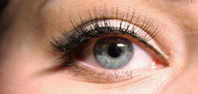 كيفية تكبير العين