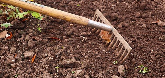 كيفية التخلص من ملوحة التربة