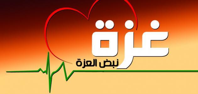 لماذا سميت غزة هاشم