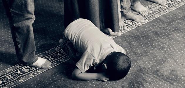 ما حكم من نسي سجدة في الصلاة