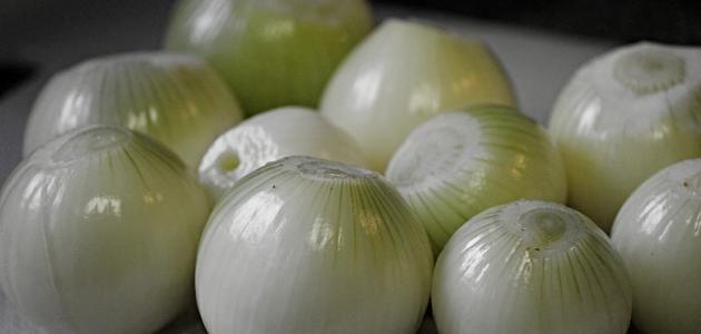 طريقة عمل البصل البودرة