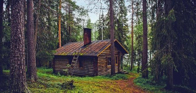 كيف تصنع منزلاً من الخشب