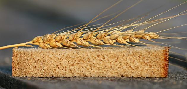 كم عدد السعرات الحرارية في الخبز الأسمر