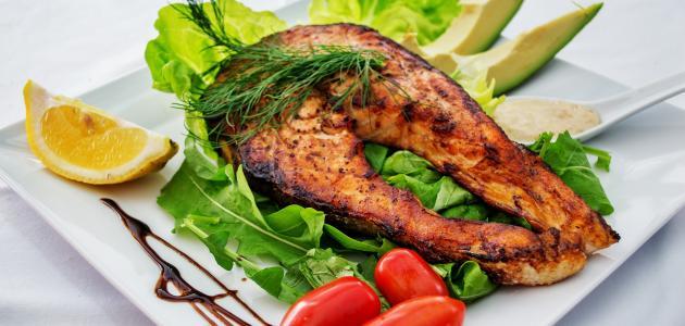 ما هي أضرار رجيم البروتين