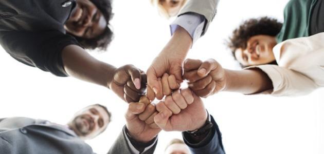 بحث عن مبادئ الإدارة