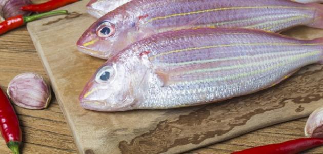 أطباق أسماك مختلفة