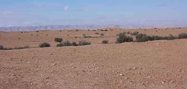 تضاريس الجزائر