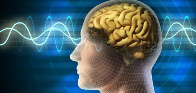 ما أعراض ورم الدماغ
