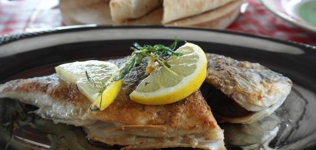 أطباق سمك الفيليه