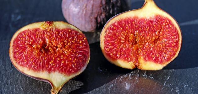 الفواكه التي ذكرت في القرآن