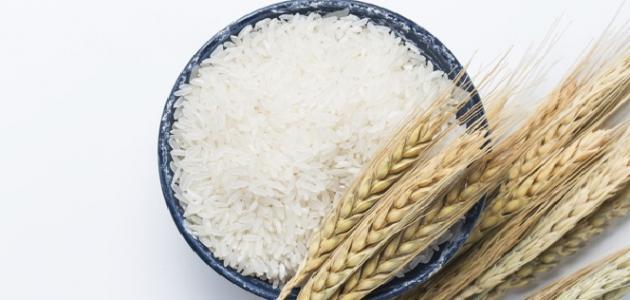 أضرار أكل الأرز غير المطبوخ