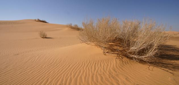 أكبر صحراء رملية في العالم