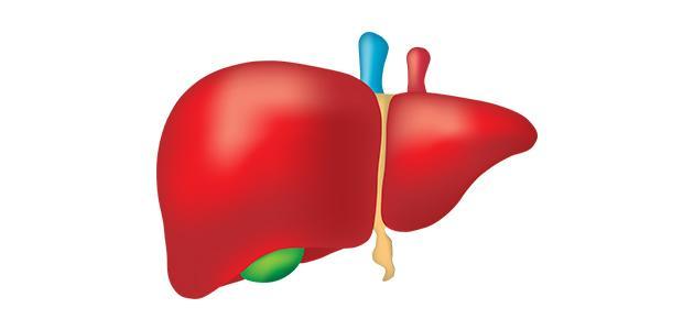 أعراض أمراض الكبد