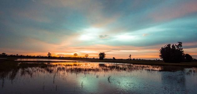 نسبة ملوحة الماء الصالح للزراعة