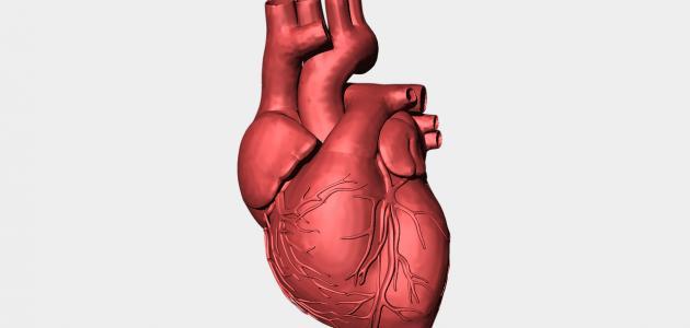 تشخيص قصور القلب