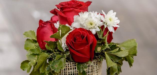 المحافظة على باقة الورد الطبيعي
