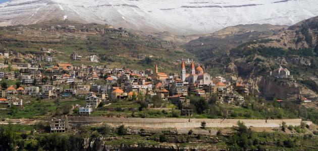 بحث عن تضاريس الوطن العربي