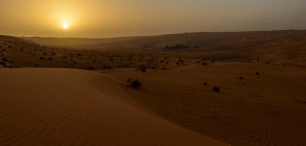بحث عن تضاريس المملكة العربية السعودية