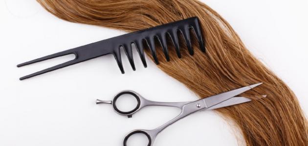 المحافظة على الشعر من التساقط