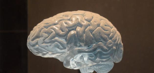 أسباب ورم الدماغ