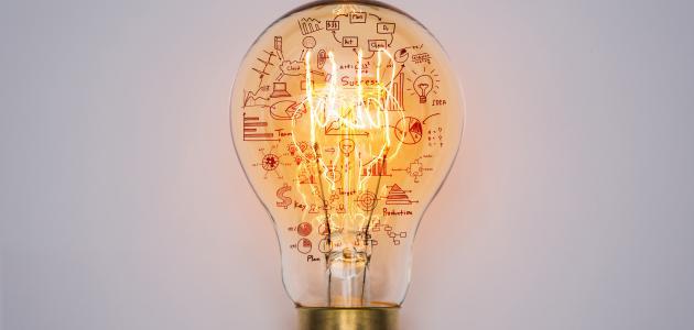 أفكار مربحة بدون رأس مال