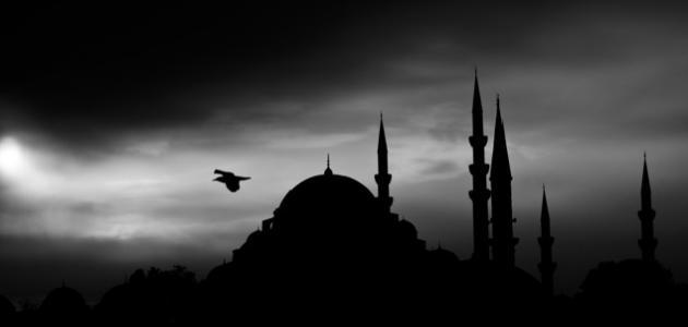 حكم ممارسة العادة في رمضان
