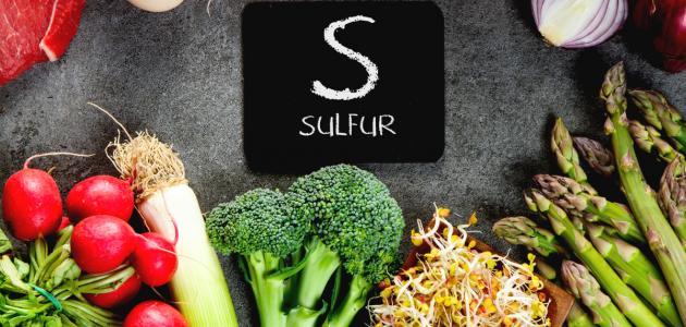 أهم مصادر الكبريت الغذائية