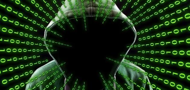 ما هي الجرائم المعلوماتية