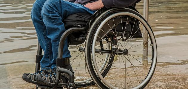 بحث عن اليوم العالمي للإعاقة