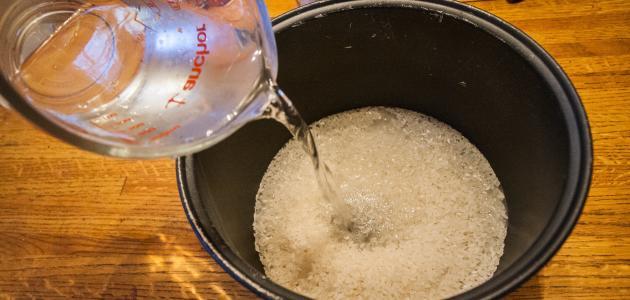 أهمية ماء الأرز للشعر