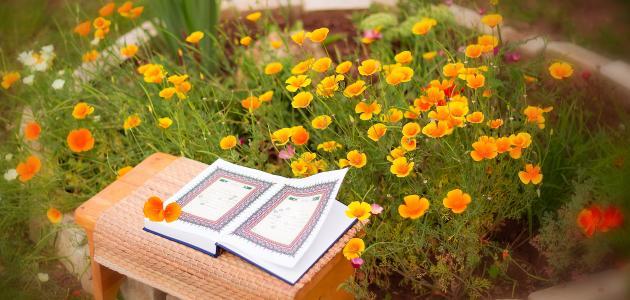 أسهل طريقة للحفظ وعدم نسيان القرآن