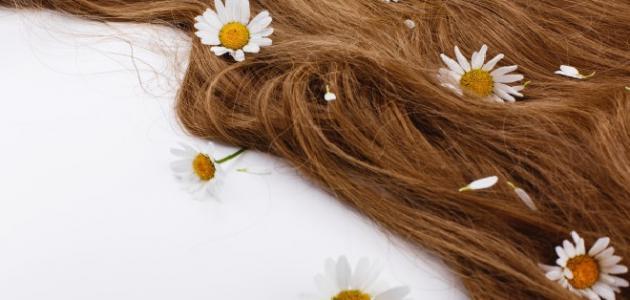 أعشاب تكثف الشعر