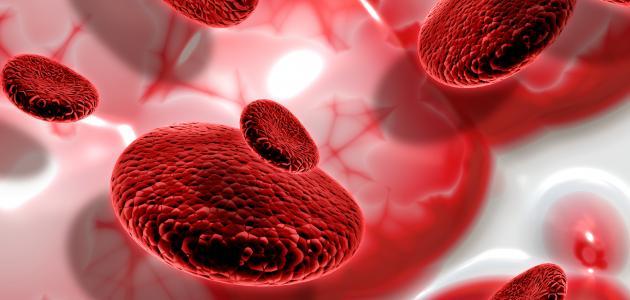 أهمية الدم في جسم الإنسان