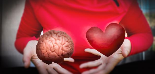 أهمية الذكاء العاطفي