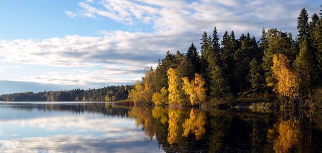 كم عدد البحيرات في السويد