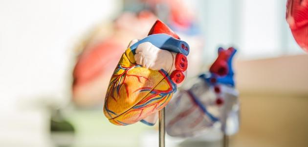 أنواع تضخم القلب
