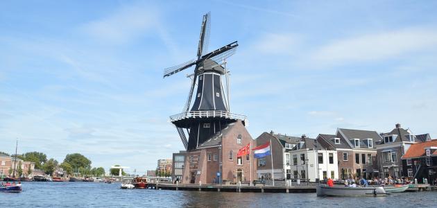مدينة هارلم الهولندية