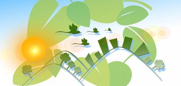 المحافظة على التوازن البيئي