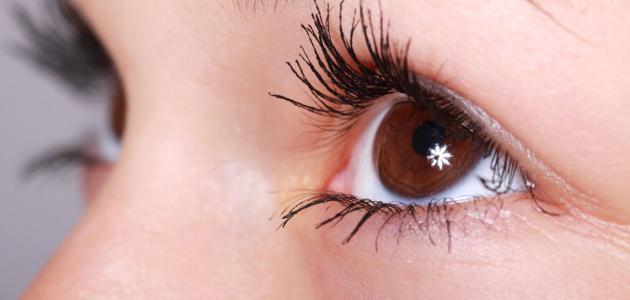 التخلص من رفة العين