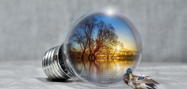 المحافظة على البيئة والمحيط