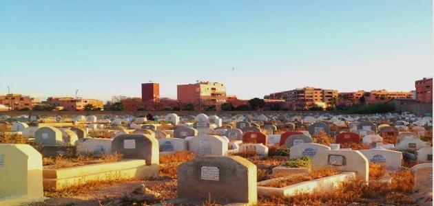 ما هي ضمة القبر