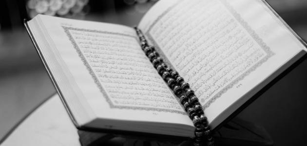 أحاديث في فضل القرآن