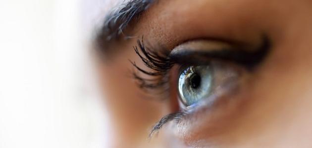 782a3d566 كيفية المحافظة على صحة العين - موضوع