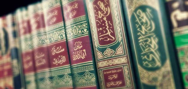 أحاديث صحيح البخاري ومسلم
