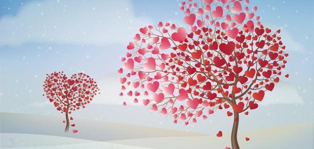 أقوال وحكم عن الحياة والحب