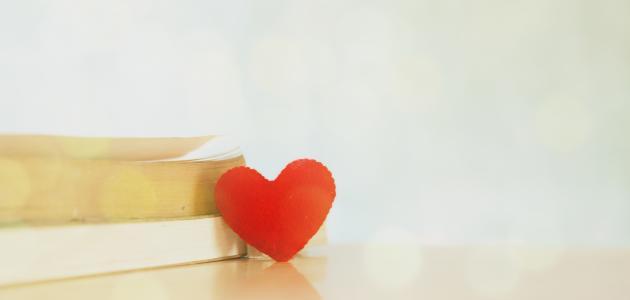 أجمل قصيدة في الحب