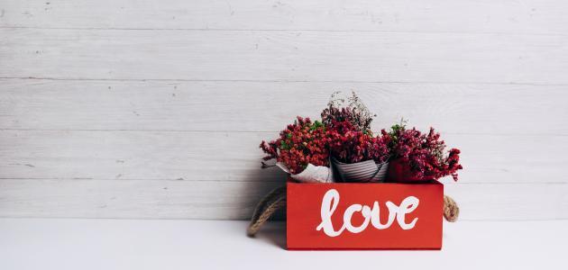 أجمل قصائد الحب والعشق