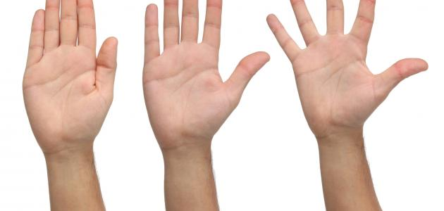 لماذا أصابع اليد غير متساوية