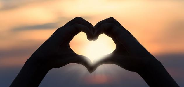 أجمل عبارة عن الحب