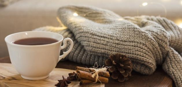 أقوال عن فصل الشتاء
